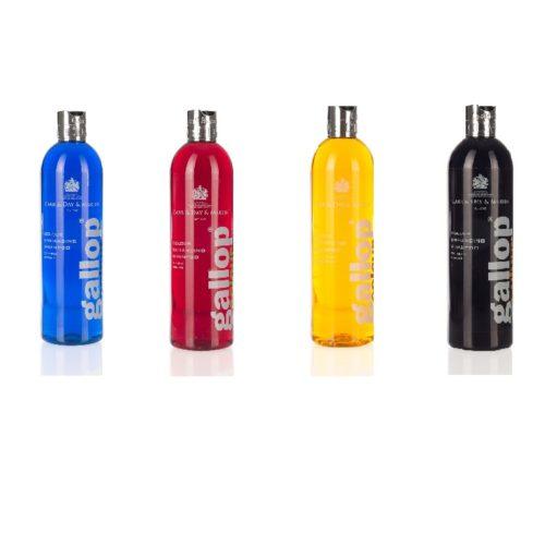 C&D&M GALLOP COLOUR Szampon wzmacniający kolor